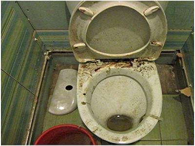 Как вычистить унитаз: порошок, гель или крем
