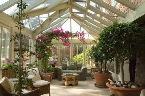 Как создать зимний сад